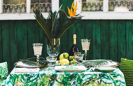 Vytvořte si doma zelenou džungli