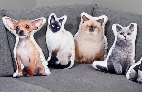 Čtyřnozí přátelé v měkoučké verzi