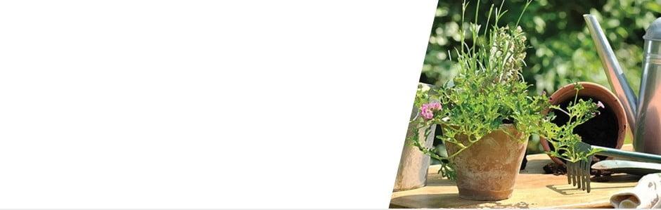 Esschert Design: Krásapodzimnízahrady