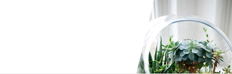 Bonami iubește produsele eco ♥