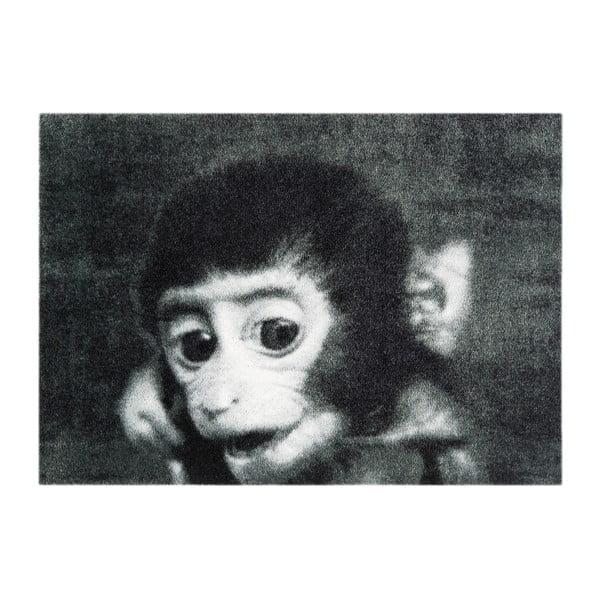 Šedá rohožka Mint Rugs StateMat Monkey, 50 x 75 cm