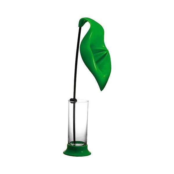 Odšťavňovač se sklenicí Anthurium Green
