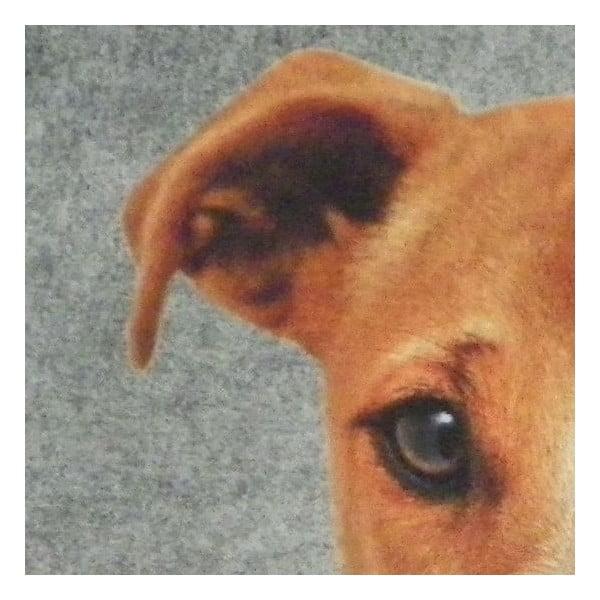 Předložka Jack Russell 75x50 cm
