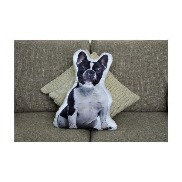 Polštářek Adorable Cushions Francouzský buldoček