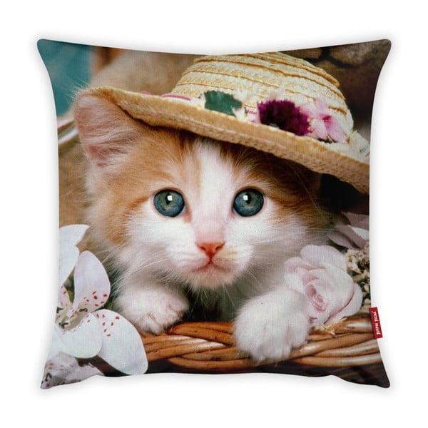 Față de pernă Vitaus Cute Kitten, 43 x 43 cm
