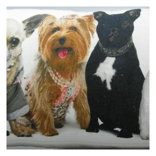 Polštář Dogs 20x90 cm