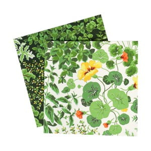 Set 10 felicitări Laura Ashley Living Wall by Portico Designs