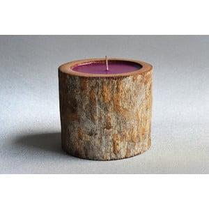 Palmová svíčka Legno s vůní white musk, 80 hodin hoření