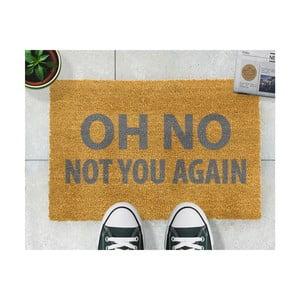 Rohožka Artsy Doormats Oh No Not You Again Grey,40x60cm