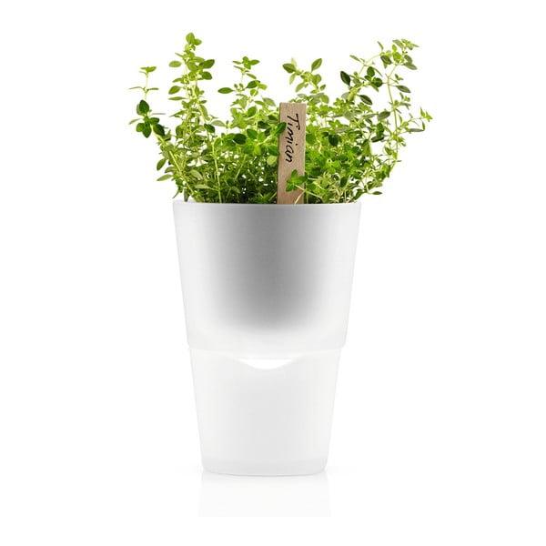 Samopodlévací květináč na bylinky Eva Solo Matt, 11 cm