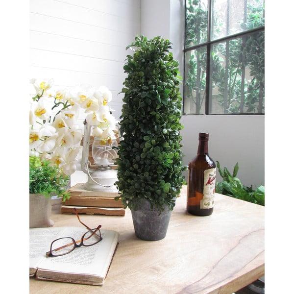 Dekorativní strom Topiary