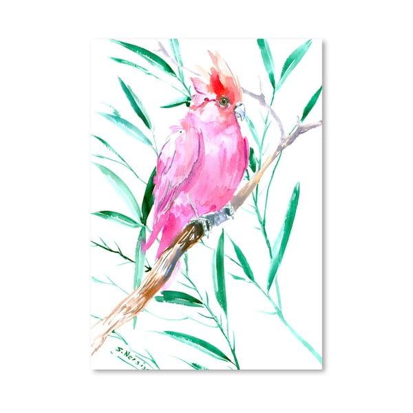 Plakát Cockatoo Pink