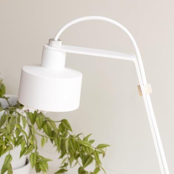 Stolní LED lampa Jazz white/white