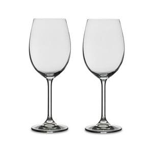 Set 2 pahare pentru vin alb din cristal Bitz Fluidum, 450 ml