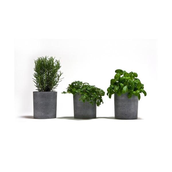 Set 3 betonových květináčů Spicepot 13