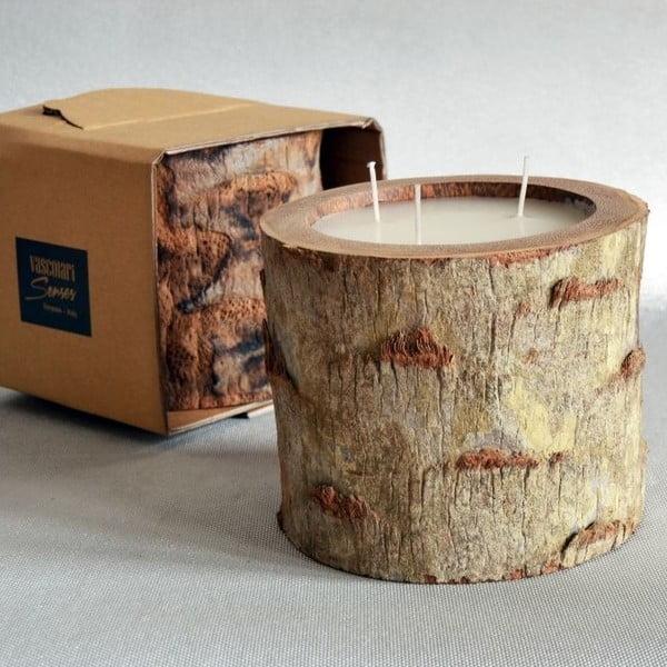 Palmová svíčka Legno Ebony s vůní vanilky a pačuli, 100 hodin hoření
