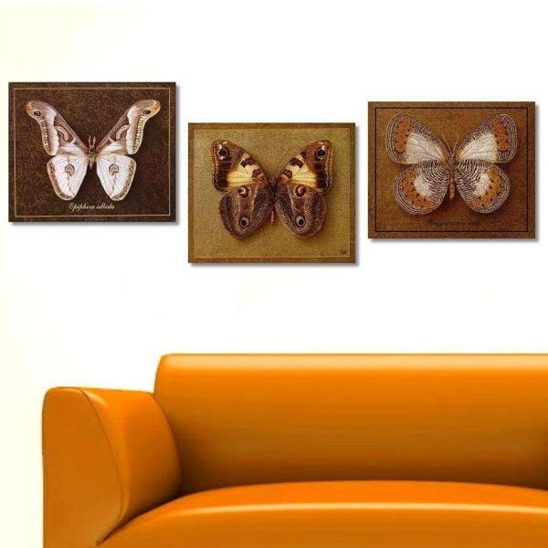 3dílný obraz Butterfly, 45x90 cm