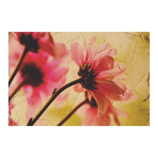 Fotoobraz Květy Vintage, 90x60 cm