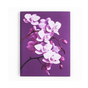 Obraz Graham & Brown Purpel Orchid, 60 x 80 cm