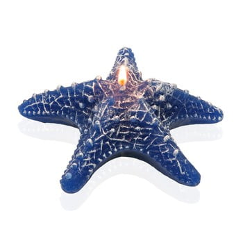 Lumânare decorativă în formă de stea de mare Versa Viera Estrella de la Versa