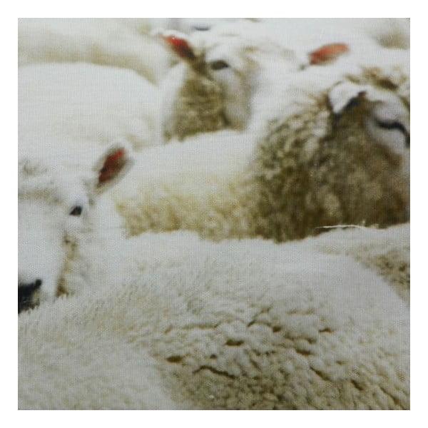Polštář Sheep 60x40 cm