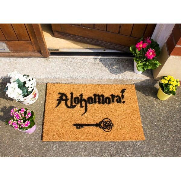 Rohožka Artsy Doormats Alohomora,40x60cm