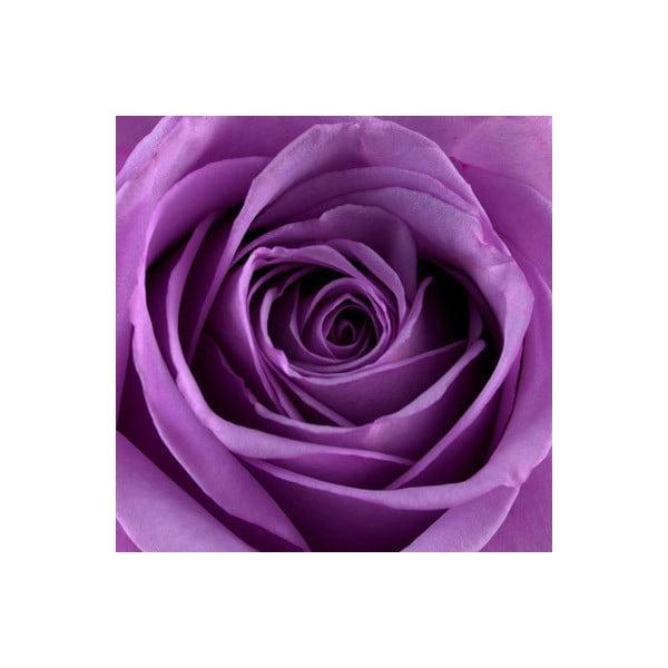 Obraz na skle Růže III, 20x20 cm