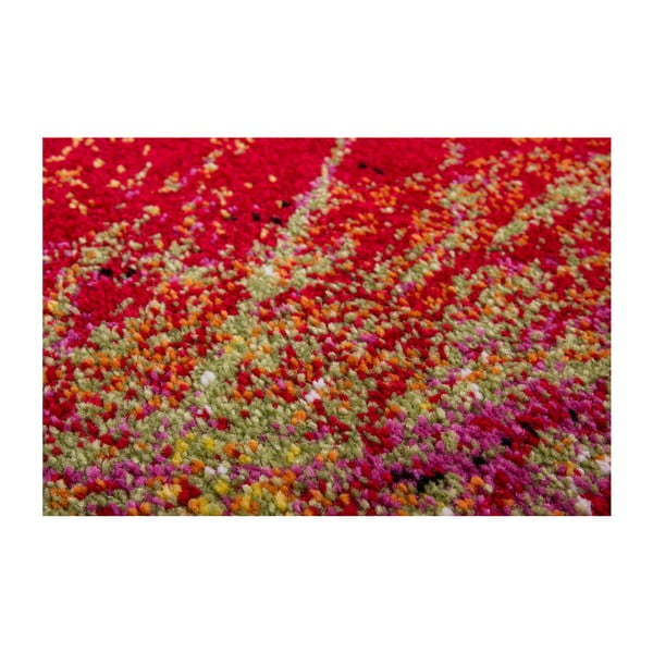 Koberec Rush, 80x150 cm
