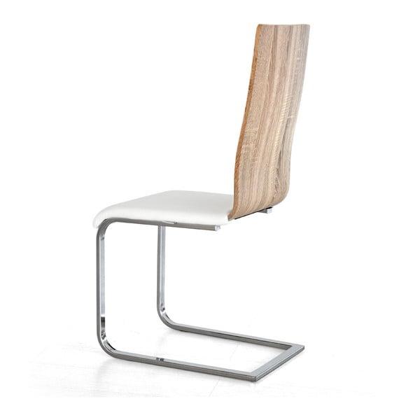 Jídelní židle Shark