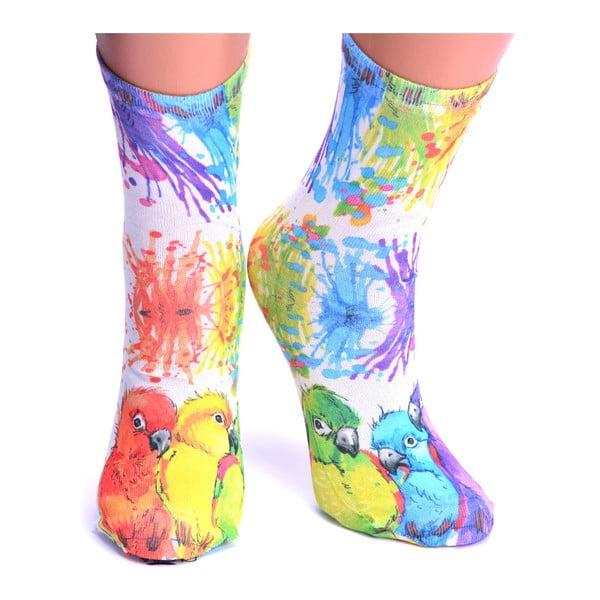 Dámské ponožky Provo