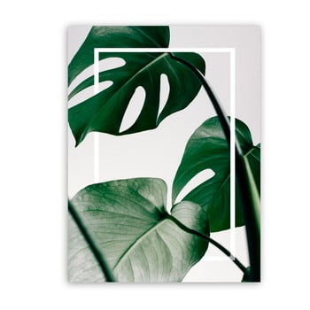Tablou Styler Canvas Greenery Monstera, 60 x 80 cm