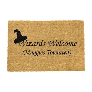 Covoraș intrare din fibre de cocos Artsy Doormats Wizards Welcome, 40 x 60 cm imagine