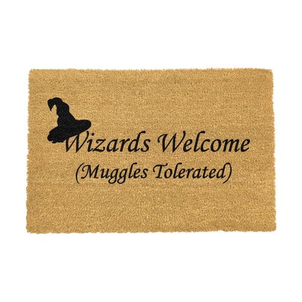 Covoraș intrare din fibre de cocos Artsy Doormats Wizards Welcome, 40 x 60 cm
