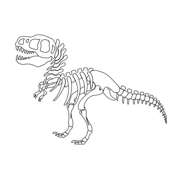 Samolepka na stěnu T-Rex Skeleton