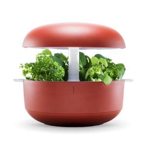 Domácí inteligentní červená zahrádka Plantui 6 Smart Garden Red