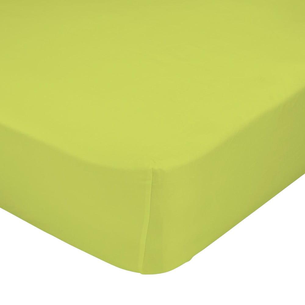 Zelené elastické prostěradlo z čisté bavlny Happynois, 70 x 140 cm