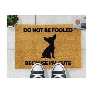 Covoraș intrare din fibre de cocos Artsy Doormats Chihuahua, 40 x 60 cm