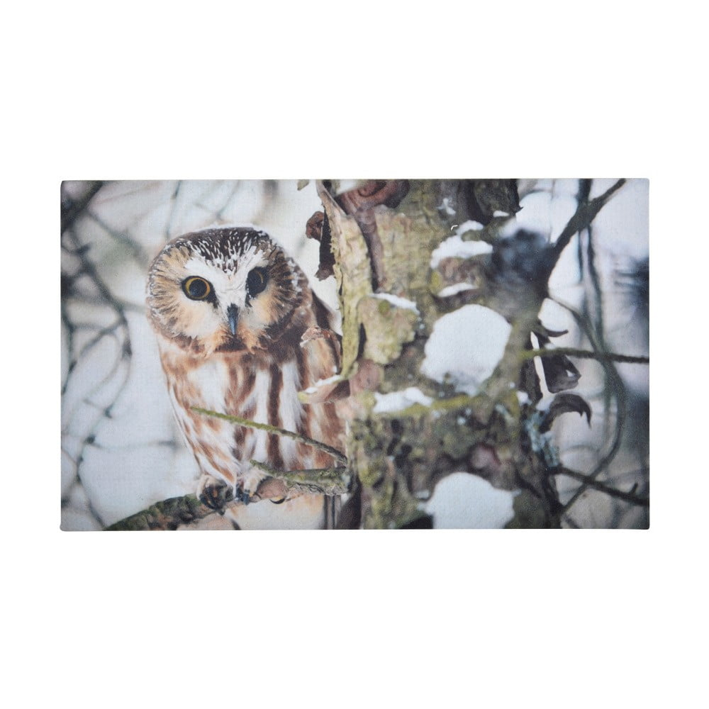 Podložka pod litinovou rohožku Esschert Design Owl