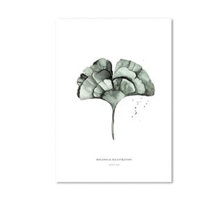 Plakát Leo La Douce Ginko Leaf,29,7x42cm