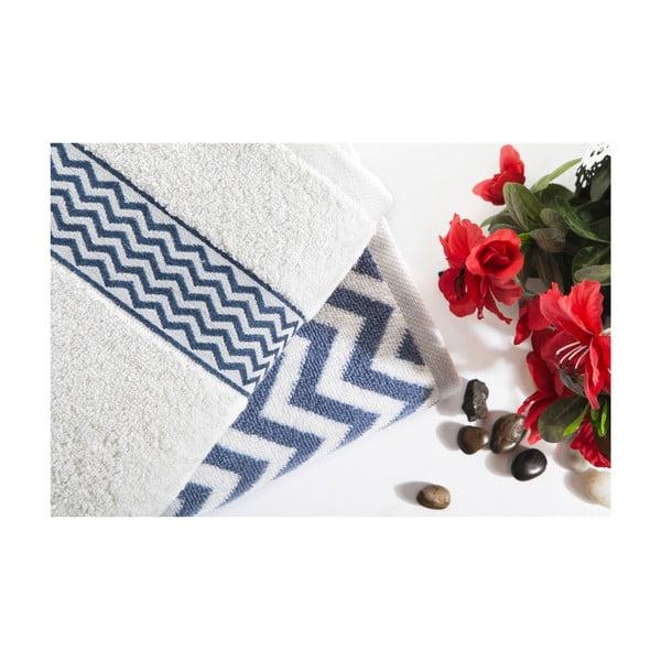 Sada 2 bavlněných modro-bílých ručníků Ladik Ella,50x90cm