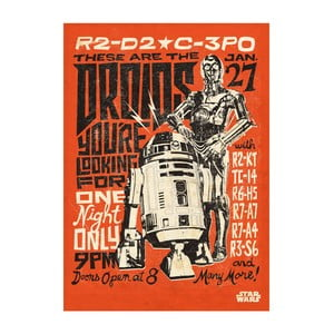 Poster Star Wars Legends - Droids