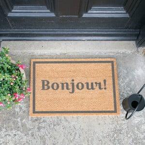Rohožka Artsy Doormats Bonjour Grey,40x60cm
