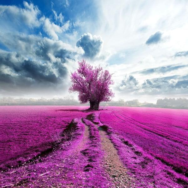 Obraz Uprostřed fialové, 60x60 cm