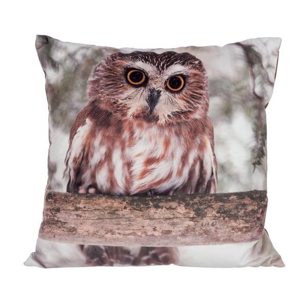 Polštář Owl Velvet, 45x45 cm