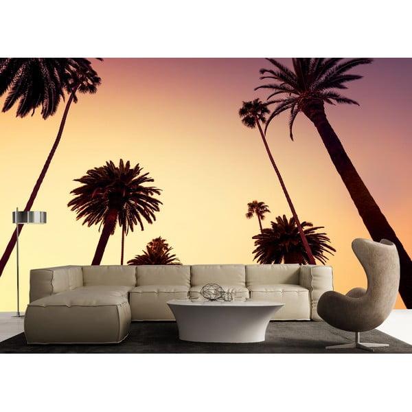 Velkoformátová tapeta Palmy při soumraku, 315x232 cm