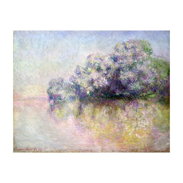 Obraz Claude Monet - Île aux Orties near Vernon, 50x40 cm