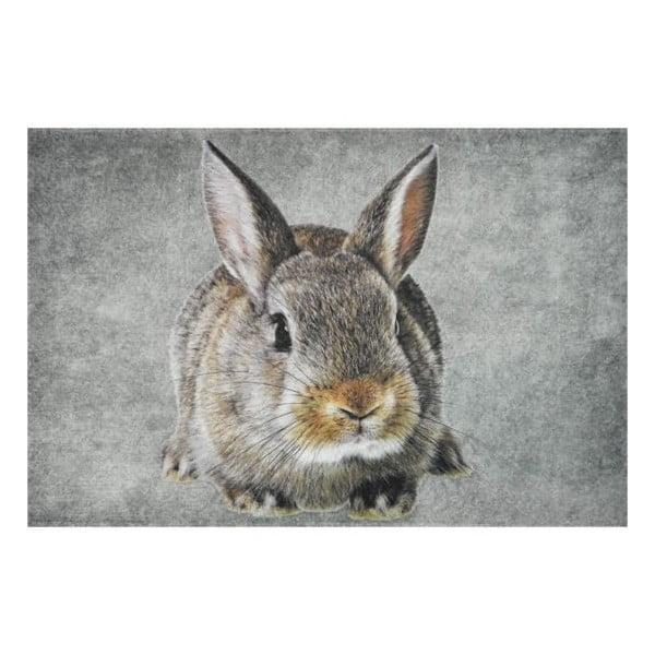 Předložka Brown Rabbit 75x50 cm