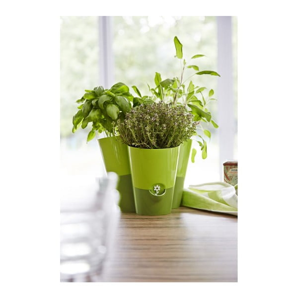 Květináč Fresh Herbs Green