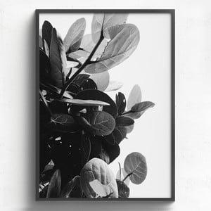 Obraz v dřevěném rámu HF Living Banes, 50 x 70 cm