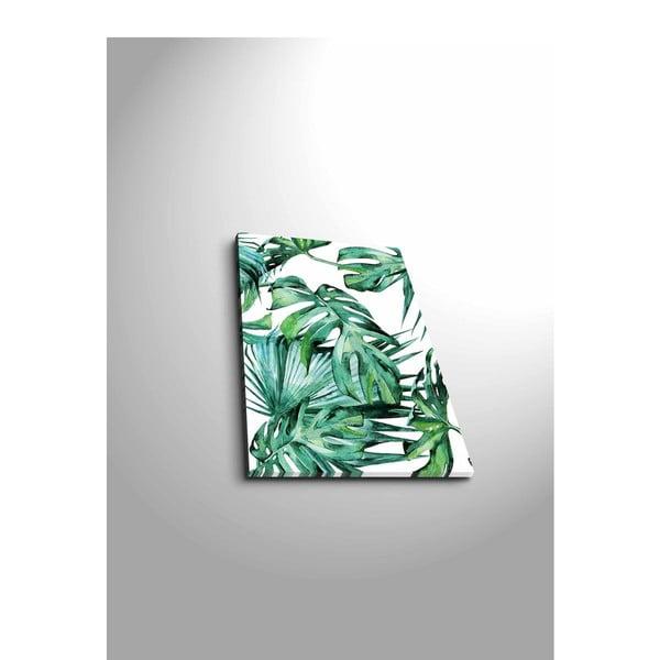 Obraz Canvart Jungle, 28 x 38 cm
